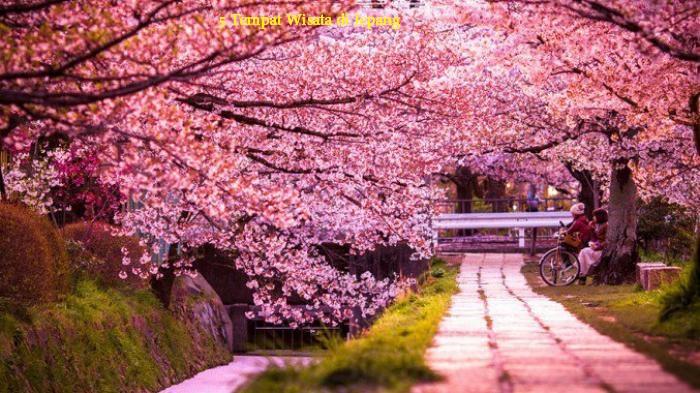 Tempat Wisata di Jepang
